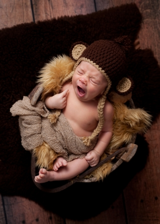 A newborn baby boy wearing a crocheted monkey hat and sleeping in an antique wooden well bucket  Shot in the studio with a sheepskin rug and rustic wood  photo