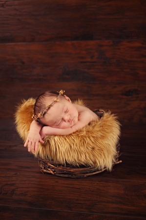 A two week old newborn baby sleeping in a twig basket and wearing a twig crown. Banco de Imagens