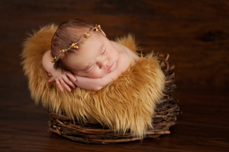 A two week old newborn baby sleeping in a twig basket and wearing a twig crown. Imagens
