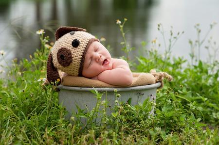Een gapende drie maanden oude baby jongetje draagt een gehaakte puppy hond hoed. Hij slaapt in een gegalvaniseerde stalen emmer die buiten in een patch van wilde bloemen groeien in de buurt van een meer is geplaatst. Stockfoto