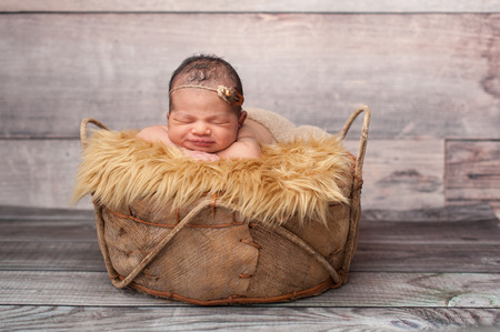 Smiling eight day old newborn baby girl. She is sleeping in a rustic basket on top of gold faux fur wearing a pearl and feather headband.