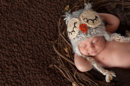 newborns: Three week old, smiling, newborn baby boy wearing a crocheted owl hat and sleeping on his back in a nest.