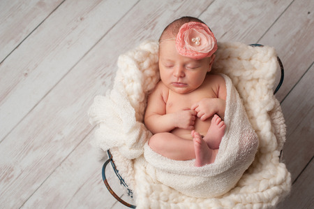 sleep with baby: A portrait of a beautiful, seven day old, newborn baby girl wearing a large, fabric rose headband. She is swaddled with gauzy fabric and sleeping in a wire basket.