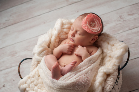 babies: A portrait of a beautiful, seven day old, newborn baby girl wearing a large, fabric rose headband. She is swaddled with gauzy fabric and sleeping in a wire basket.