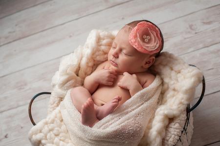 bebes lindos: Un retrato de una, siete días de edad, niña recién nacida hermosa que lleva un grande, tela rosa diadema. Ella está envuelto con tela de gasa y de dormir en una cesta de alambre. Foto de archivo