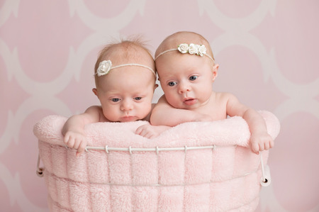 Zeven weken oude, broederlijke tweeling baby meisjes zitten in een mand. Schot in de studio tegen een roze achtergrond.