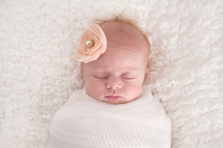A seven week old baby girl swaddled in white and wearing a flower headband. Stock Photo