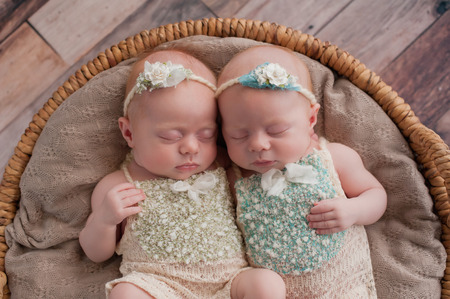 Seven week old fraternal, twin baby girls sleeping in a wicker basket. Shot in the studio on a rustic wood background.