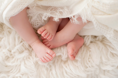 niñas gemelas: Un primer plano de los pies de las niñas bebés gemelos. Filmada en el estudio sobre una alfombra de piel de oveja.