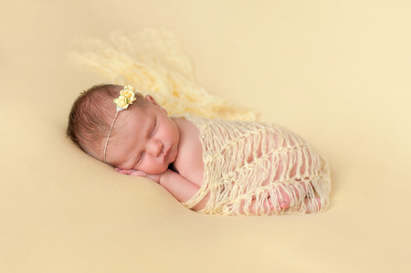 baby flower: A portrait of a beautiful nine day old baby girl swaddled in a yellow mohair wrap. She is sleeping in a curled up fetal position on a yellow blanket.