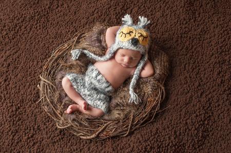 bermudas: Cuatro semanas de edad, niño recién nacido que lleva un sombrero del búho de punto y pantalones cortos. Él está durmiendo boca arriba en un nido.