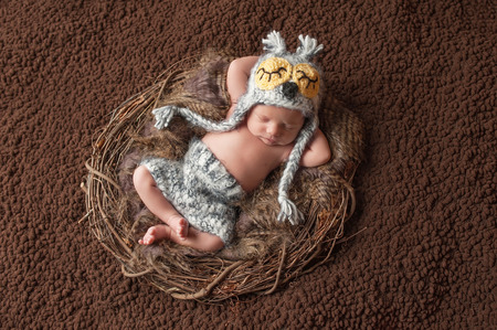 Four week old, newborn baby boy wearing a crocheted owl hat and shorts. He is sleeping on his back in a nest.