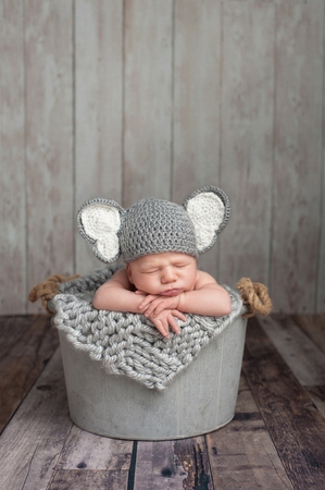 Three week old newborn baby boy wearing a gray crocheted elephant hat. He is sleeping in a galvanized steel bucket. Shot in the studio on a wood background.