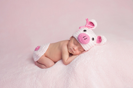 Two week old newborn baby girl wearing a pink, crocheted, piglet costume. She is sleeping on a soft, fuzzy, pink blanket. Stock Photo