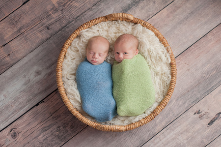 Four week old fraternal, twin baby boys swaddled in light blue and green wraps and lying in a wicker basket. One brother appears to be whispering a secret to the other brother. Archivio Fotografico