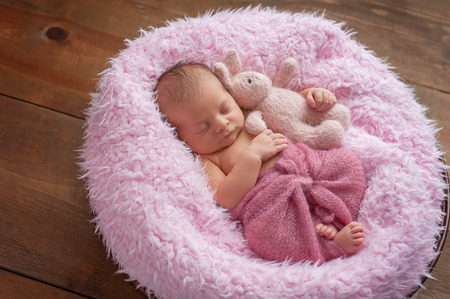 stuffed toy: A six day old newborn baby girl sleeping in a round, wooden bowl on pink faux fur. She is swaddled with a berry colored mohair wrap and holding a stuffed toy bunny rabbit.