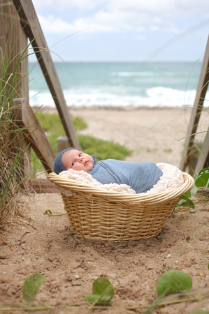 swaddled: An alert, three week old, newborn, baby boy swaddled in a blue wrap and lying in a wicker basket on a beach.