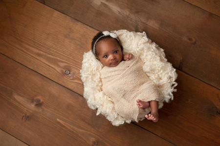 swaddled: An alert one month old newborn baby girl wearing a cream colored bow headband. She is swaddled with a beige stretch wrap and is looking directly into the camera. Shot in the studio on a wood background. Stock Photo