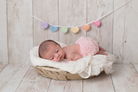 Portrait of a 2 week old newborn baby girl wearing frilly, pink bloomers. She is lying in a wooden bowl and there is a heart garland in the background. Imagens