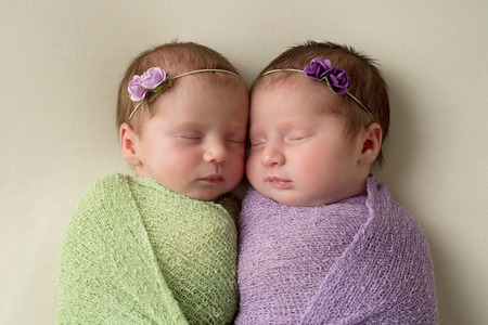 Headshot of fraternal twin newborn baby girls swaddled in light green and lavender stretch wrap material.