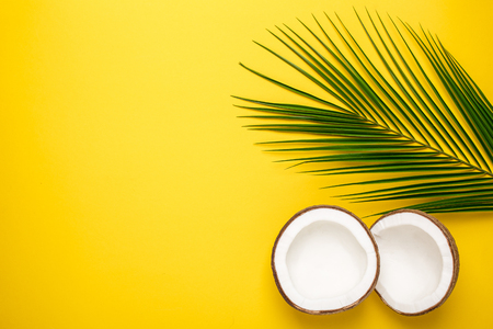 Tropical coconut and palm tree on yellow background top view