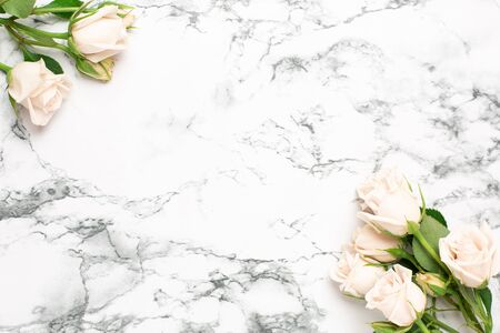 Beautiful white roses flower on marble background with copy space for your text top view