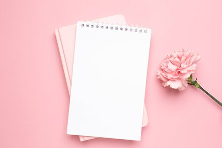 White and pink notebook with carnation flower on a pink background