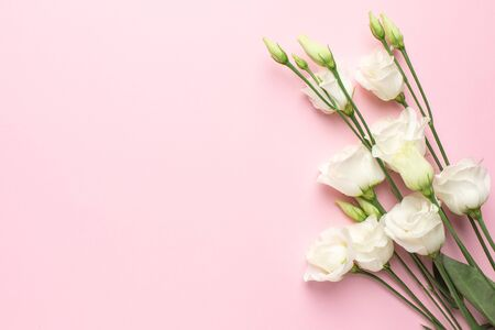 White eustoma flowers on pink background with copyspace. Minimalistic composition for the holidays. top view. Stock fotó
