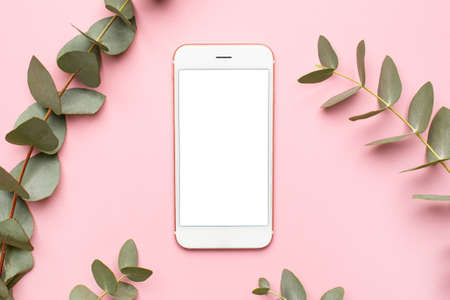 Mobile phone and green plant eucalyptus on a pink background top view