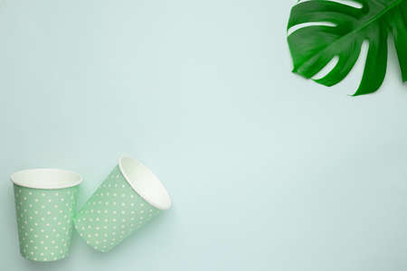 Paper cup with polka dot print green color on mint background with monstera leaf copyspace. Eco friendly takeout cup for drink top view