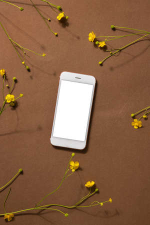 Minimalist beige brown life composition with wildflower and technology - mobile phone, yellow flower, abstract modern art design concept top view