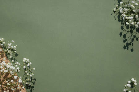 Small white flowers on pastel green background with hard light shadows. Happy Women's Day, Wedding, Mother's Day, Easter, Valentine's Day, Eco and Green Planet concept. Flat lay, top view Stockfoto