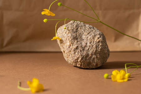 Minimalist beige brown life composition with natural material: stone , wild flower yellow color, abstract modern art design concept copyspace platform background sde view Stockfoto