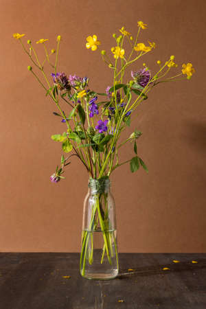 Still life with wildflowers in glass bottle on brown background. Modern trendy composition with dried flower , dark shadows side view Stockfoto