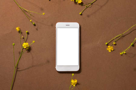 Minimalist beige brown life composition with wildflower and technology - mobile phone, yellow flower, abstract modern art design concept top view. High quality photo