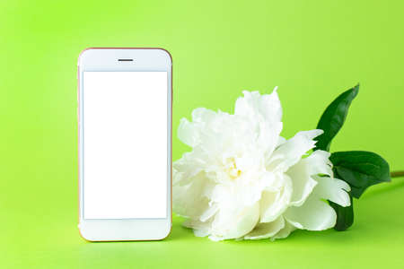 Blossoming white peony flower and mobile phone with white screen copy space. spring concept and technology on green background side view