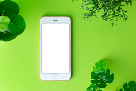Smartphone mobile phone with white screen and green plant on green background top view Stockfoto
