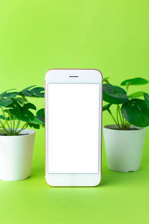 Smartphone mobile phone with white screen and green plant on green background side view vertical