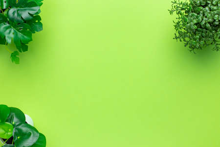 Grassy green plastic plants in pots on green background isolated