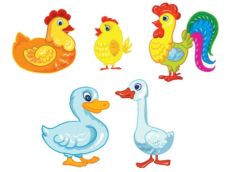 cartoon illustration - isolated barnyard birds on white background Vector