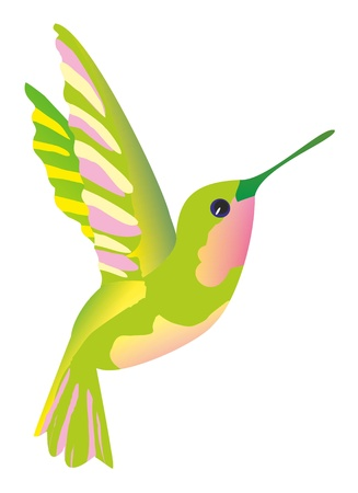 Illustration- green hummingbird