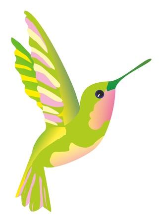 sipping: Illustration- green hummingbird
