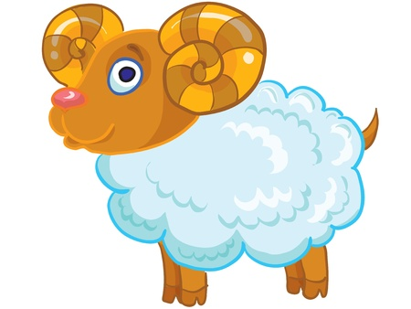 funny pictures: cartoon illustration- funny sheep