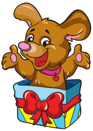 Dog in a box on a white background, vector illustration