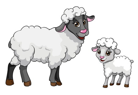 Sheep and lamb, vector illustration on white background Illustration
