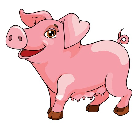 funny pig, vector illustration on white background Stock Illustratie