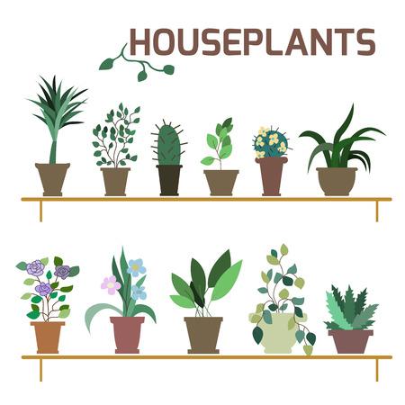 flower icon: Set of indoor plants in pots Illustration