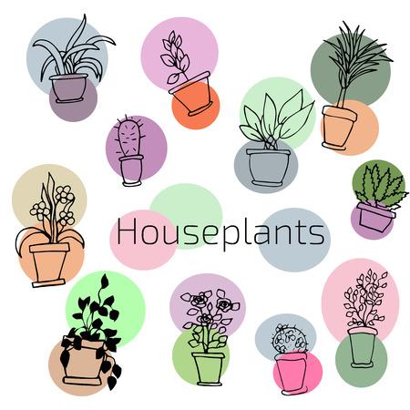 design set of house plants in colorful circles  Illustration Иллюстрация