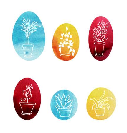 houseplants: Set of water color houseplants. Vector icons