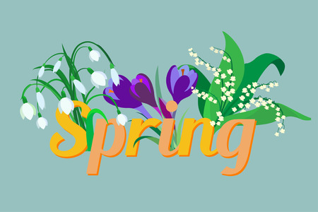 saffron: Spring flowers. Crocus, saffron, lily of the valley, snowdrops. Flet design. Vector illustration